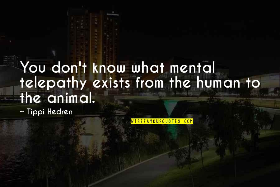 Tippi Quotes By Tippi Hedren: You don't know what mental telepathy exists from