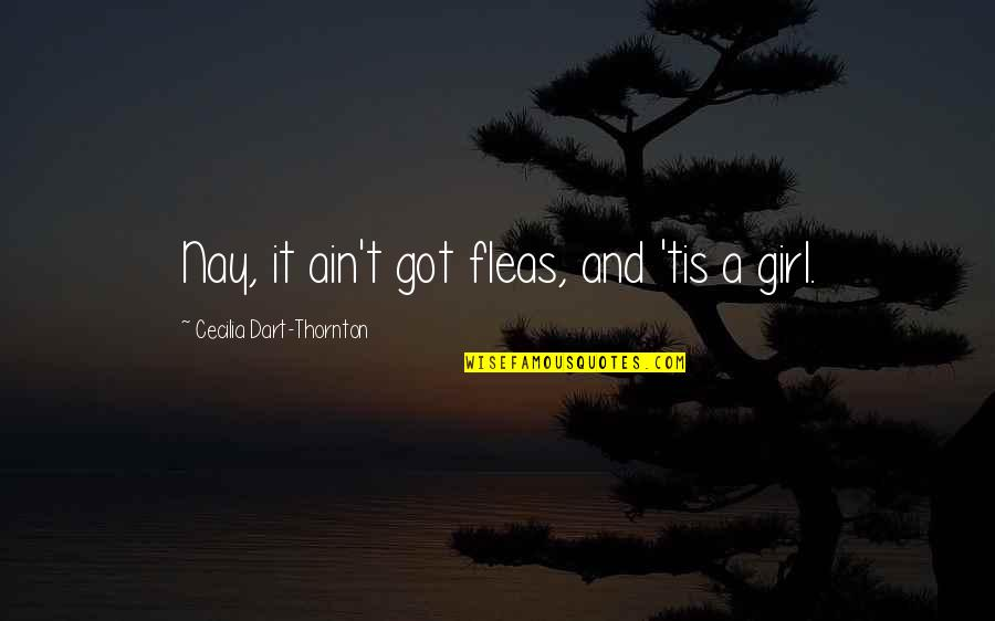 Tis Quotes By Cecilia Dart-Thornton: Nay, it ain't got fleas, and 'tis a