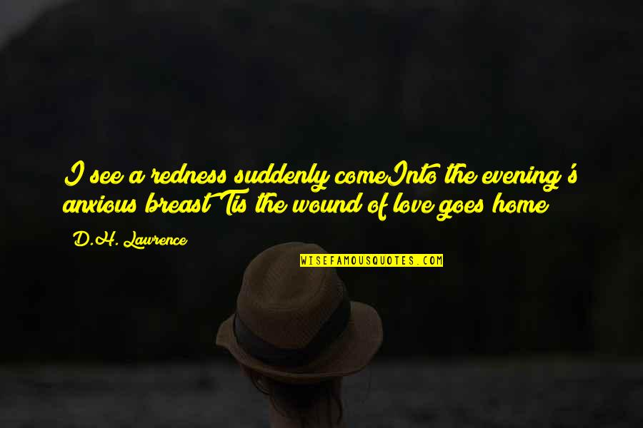 Tis Quotes By D.H. Lawrence: I see a redness suddenly comeInto the evening's