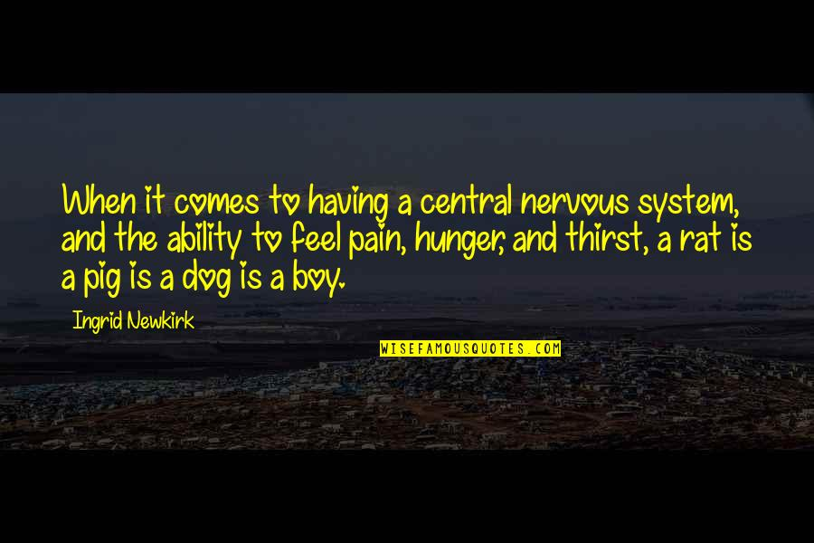 To Feel Pain Quotes By Ingrid Newkirk: When it comes to having a central nervous