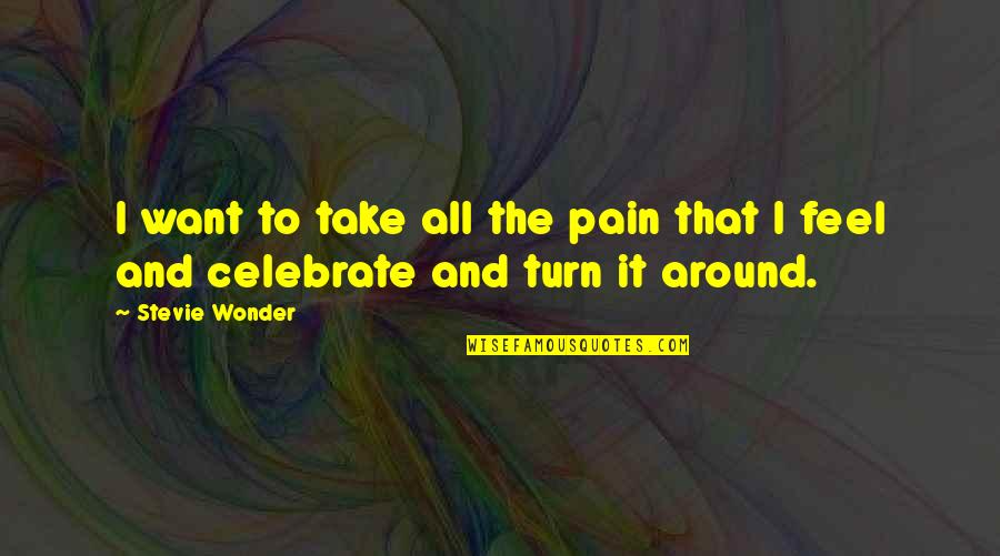 To Feel Pain Quotes By Stevie Wonder: I want to take all the pain that