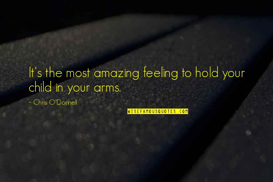To Hold You In My Arms Quotes By Chris O'Donnell: It's the most amazing feeling to hold your