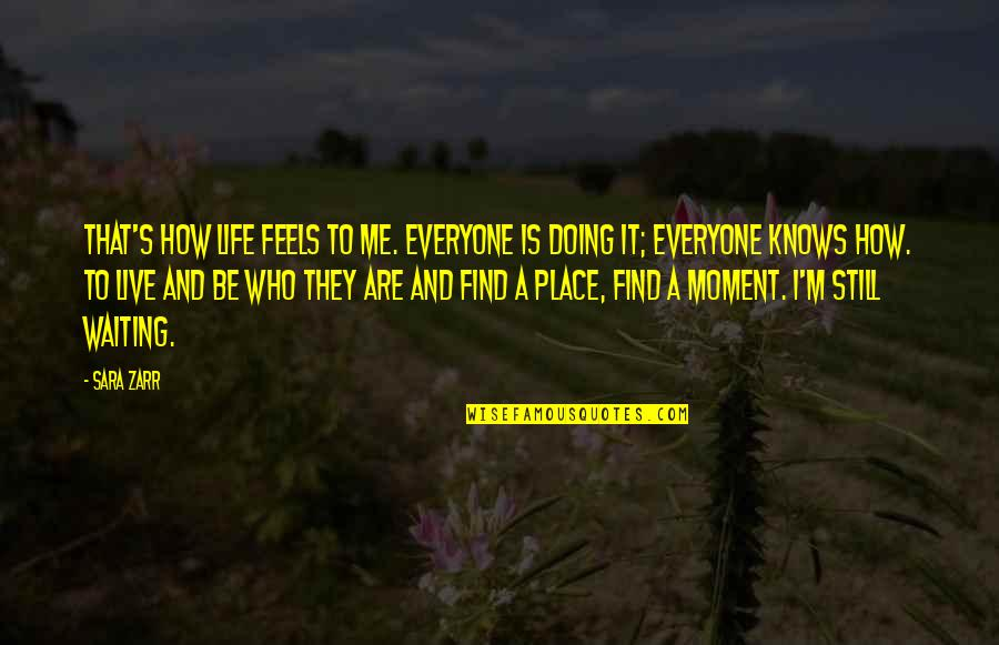 To Live Life Quotes By Sara Zarr: That's how life feels to me. Everyone is