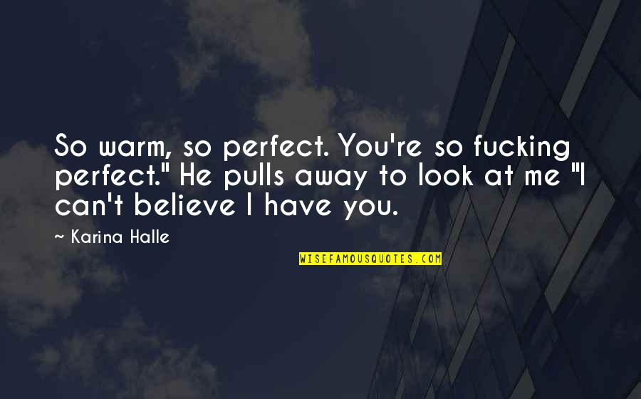 To Me You Re Perfect Quotes By Karina Halle: So warm, so perfect. You're so fucking perfect.""