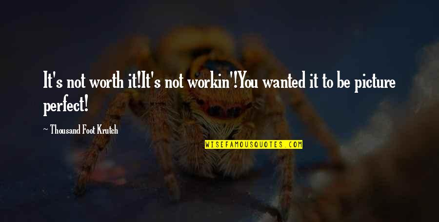 To Me You Re Perfect Quotes By Thousand Foot Krutch: It's not worth it!It's not workin'!You wanted it