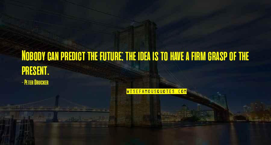 To Predict The Future Quotes By Peter Drucker: Nobody can predict the future; the idea is