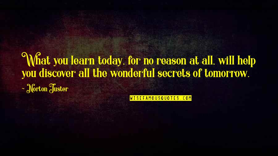 Today Was Wonderful Quotes By Norton Juster: What you learn today, for no reason at