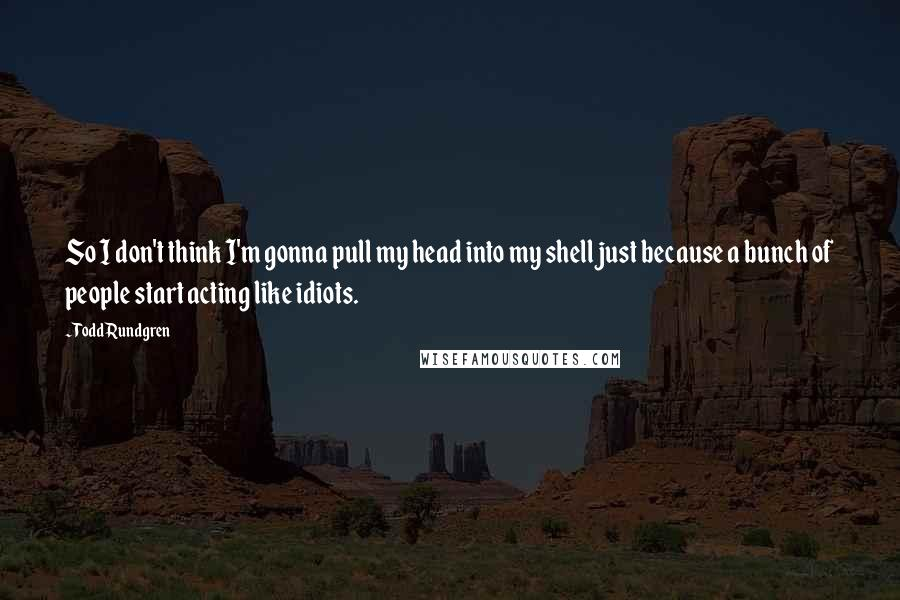 Todd Rundgren quotes: So I don't think I'm gonna pull my head into my shell just because a bunch of people start acting like idiots.