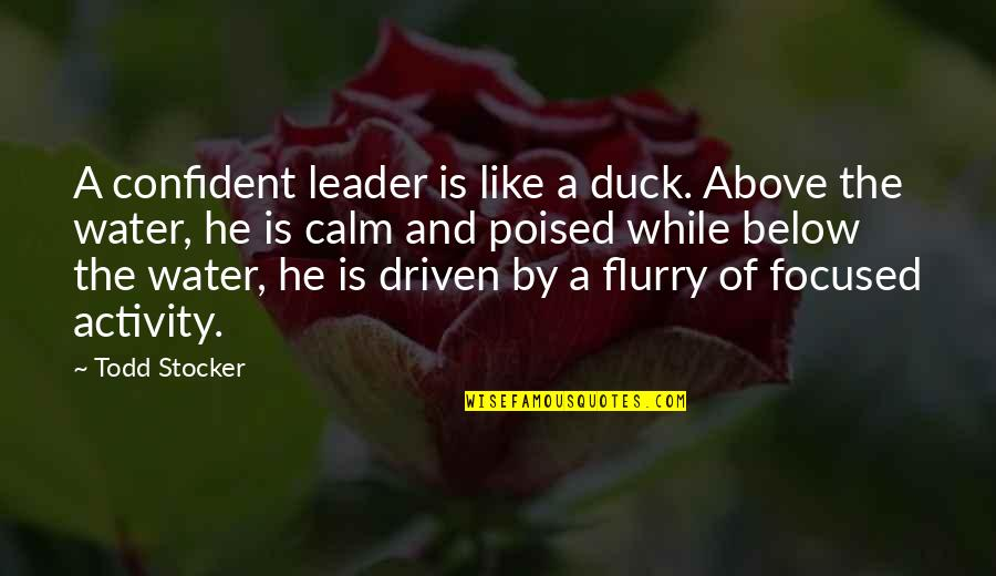 Todd Stocker Quotes By Todd Stocker: A confident leader is like a duck. Above