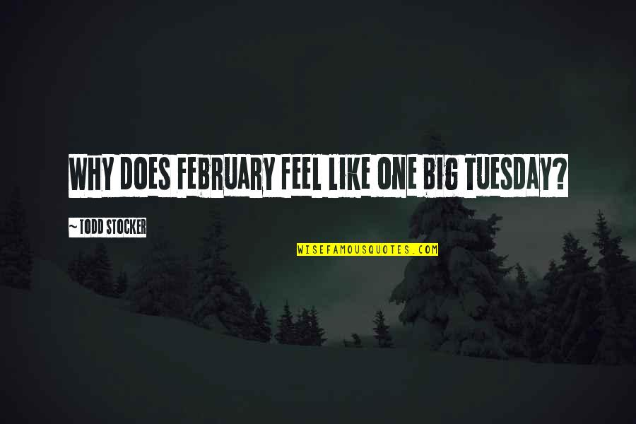 Todd Stocker Quotes By Todd Stocker: Why does February feel like one big Tuesday?