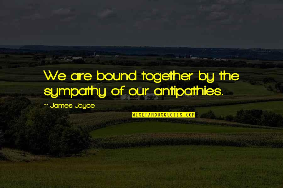 Together We Are Quotes By James Joyce: We are bound together by the sympathy of