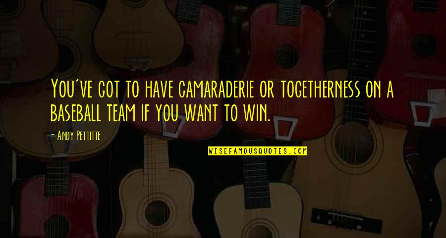 Togetherness In A Team Quotes By Andy Pettitte: You've got to have camaraderie or togetherness on