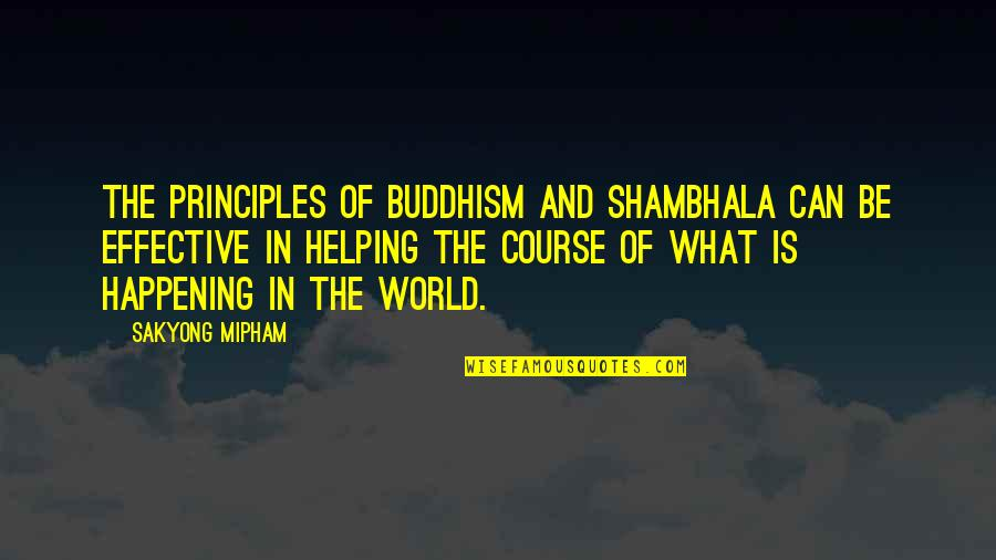 Toldme Quotes By Sakyong Mipham: The principles of Buddhism and Shambhala can be