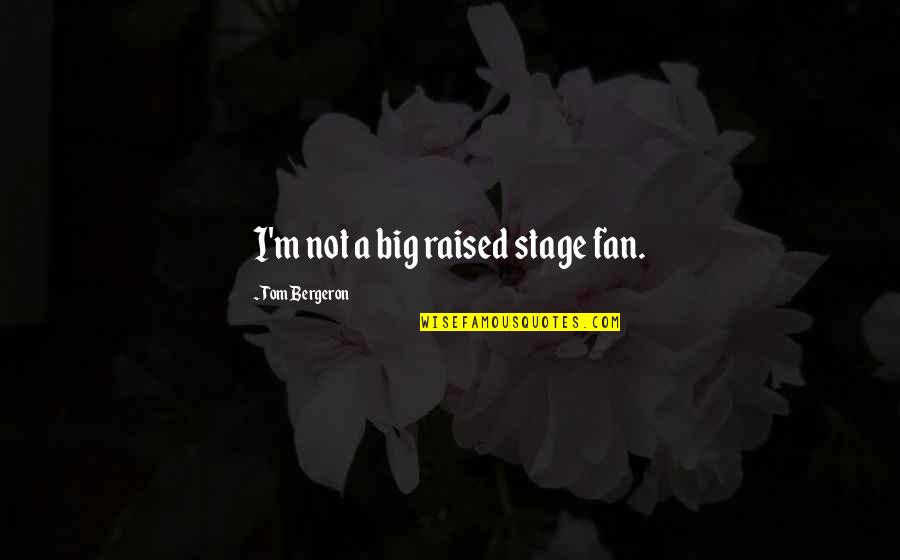 Tom Bergeron Quotes By Tom Bergeron: I'm not a big raised stage fan.