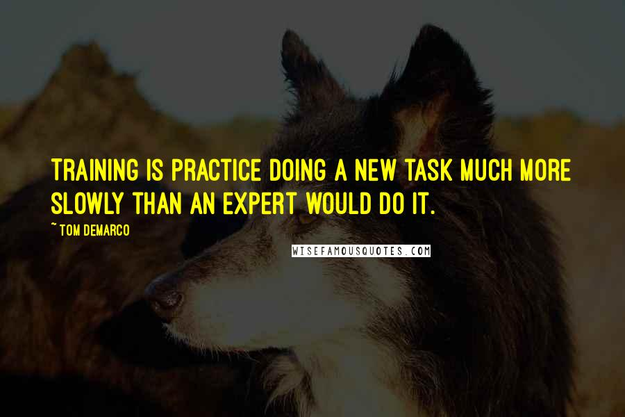 Tom DeMarco quotes: Training is practice doing a new task much more slowly than an expert would do it.