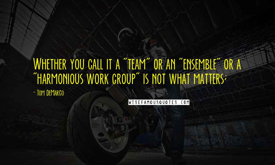 "Tom DeMarco quotes: Whether you call it a ""team"" or an ""ensemble"" or a ""harmonious work group"" is not what matters;"