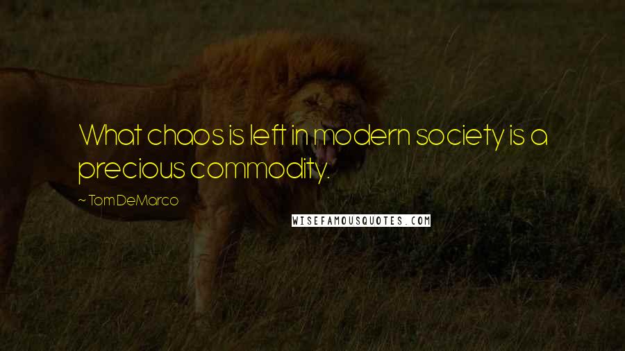 Tom DeMarco quotes: What chaos is left in modern society is a precious commodity.