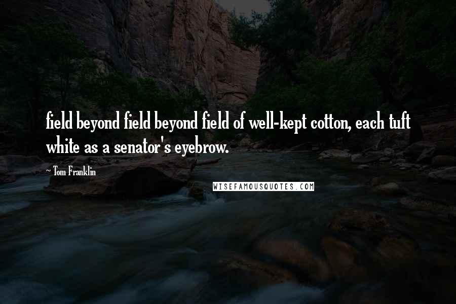 Tom Franklin quotes: field beyond field beyond field of well-kept cotton, each tuft white as a senator's eyebrow.