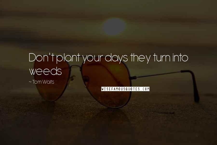 Tom Waits quotes: Don't plant your days they turn into weeds