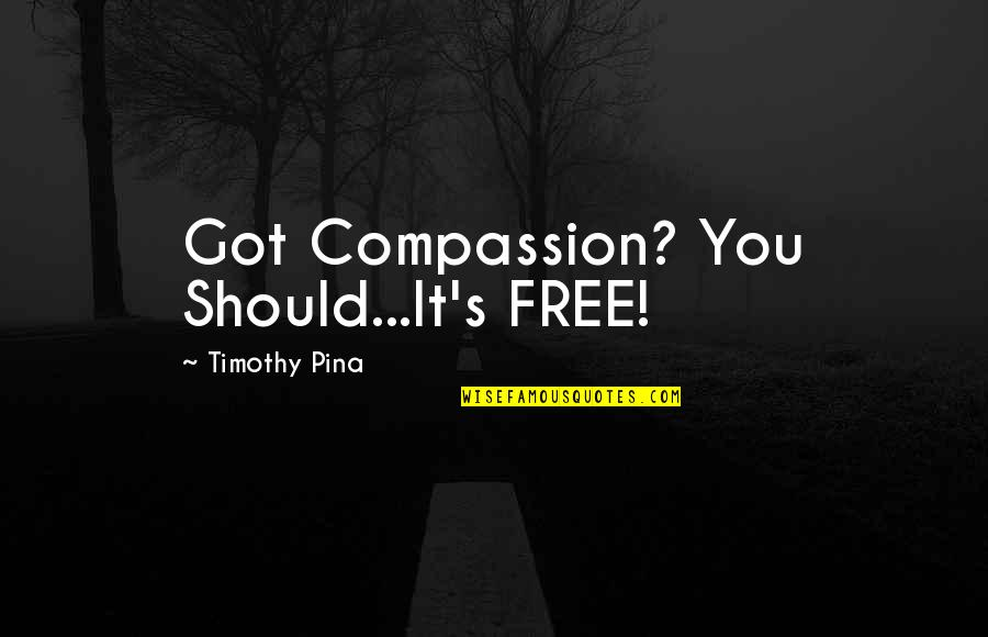 Tomorrowland Festival Quotes By Timothy Pina: Got Compassion? You Should...It's FREE!