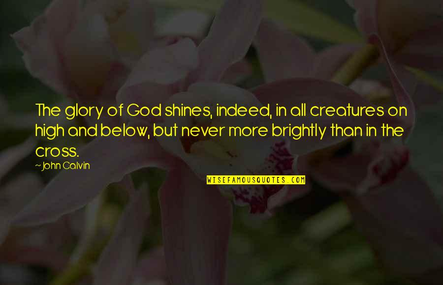 Tonpay Quotes By John Calvin: The glory of God shines, indeed, in all