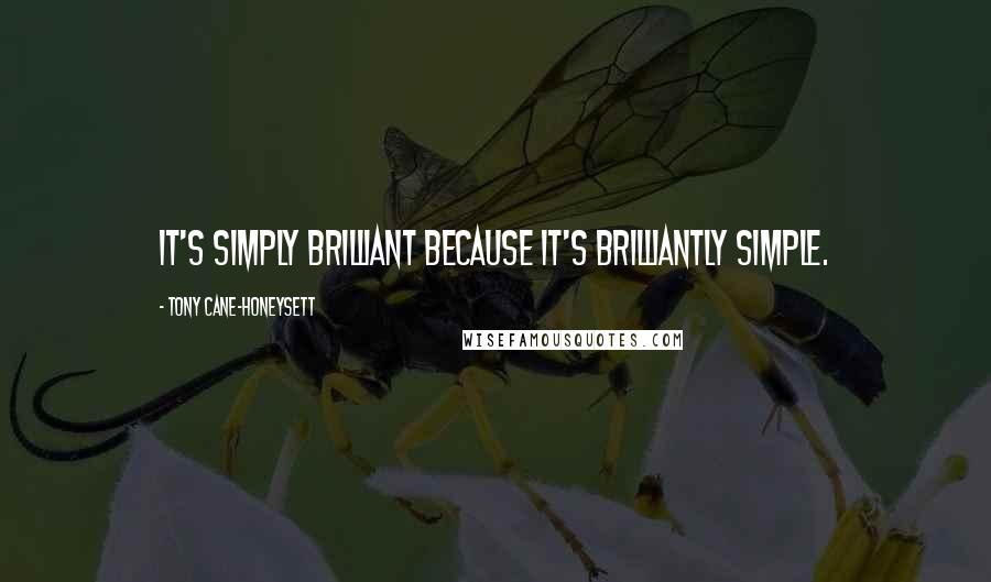 Tony Cane-Honeysett quotes: It's simply brilliant because it's brilliantly simple.