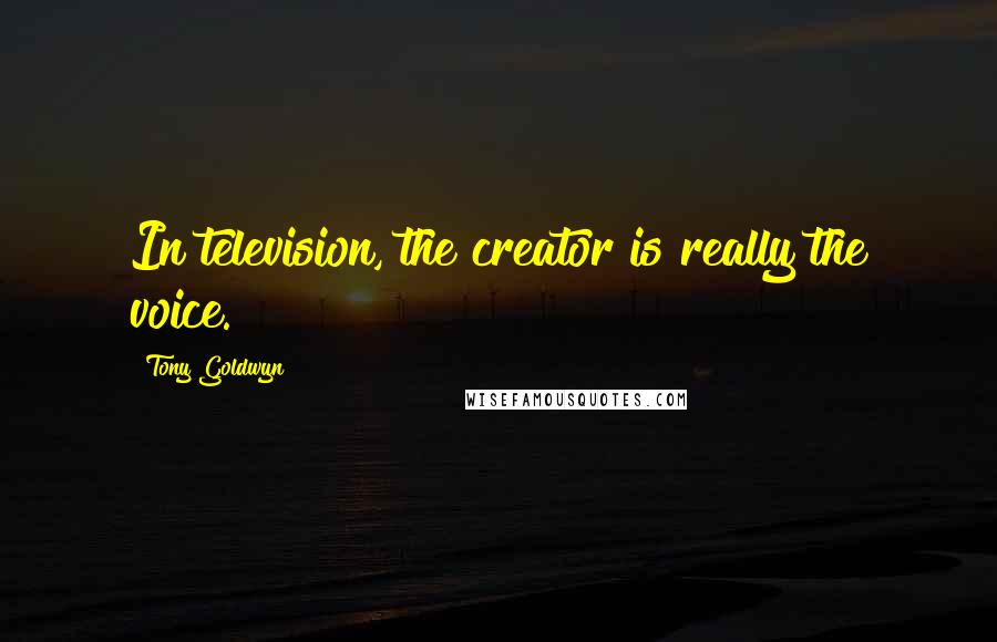 Tony Goldwyn quotes: In television, the creator is really the voice.