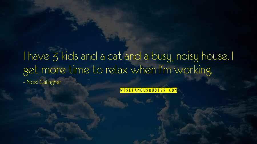 Too Busy Working Quotes By Noel Gallagher: I have 3 kids and a cat and