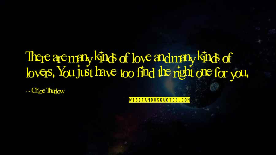 Too Many Quotes By Chloe Thurlow: There are many kinds of love and many