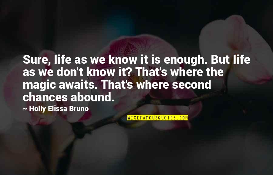 Too Many Second Chances Quotes By Holly Elissa Bruno: Sure, life as we know it is enough.