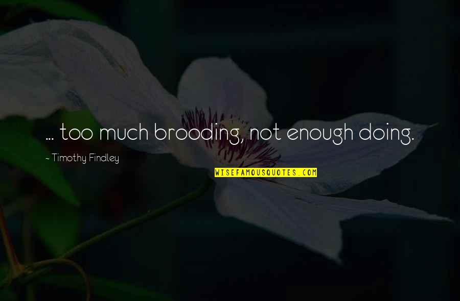 Too Much Happiness Quotes By Timothy Findley: ... too much brooding, not enough doing.