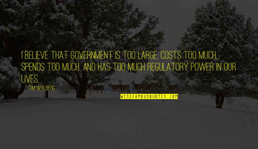 Too Much Power Quotes By Tim Walberg: I believe that government is too large, costs
