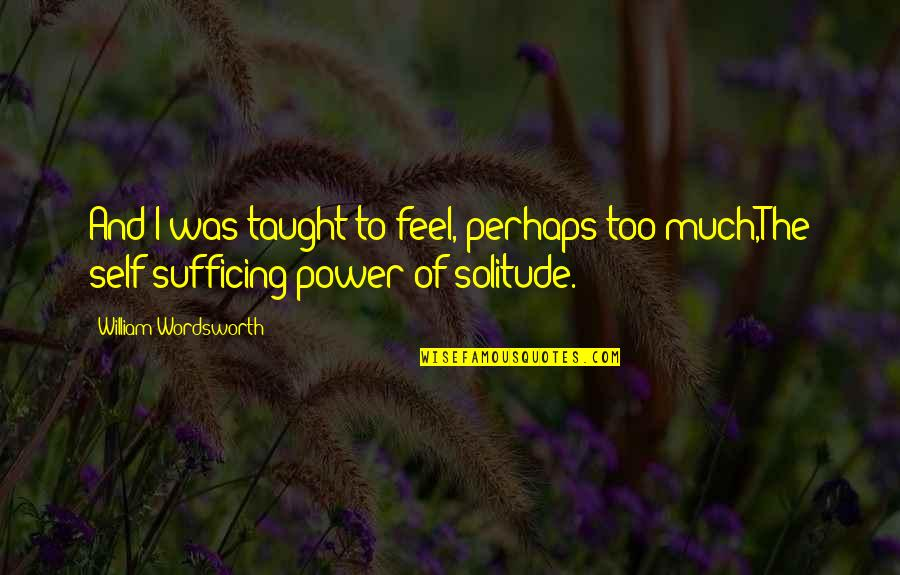 Too Much Power Quotes By William Wordsworth: And I was taught to feel, perhaps too