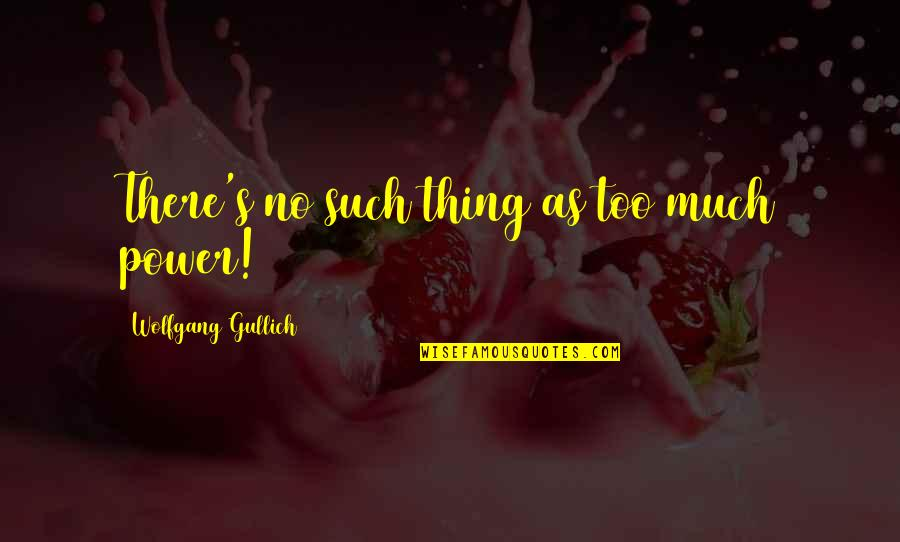 Too Much Power Quotes By Wolfgang Gullich: There's no such thing as too much power!