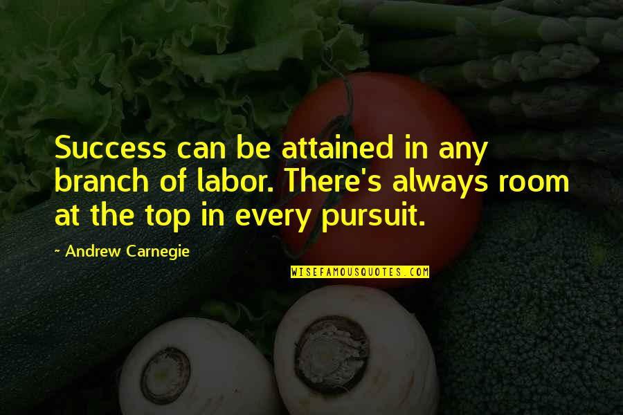 Top Of Quotes By Andrew Carnegie: Success can be attained in any branch of