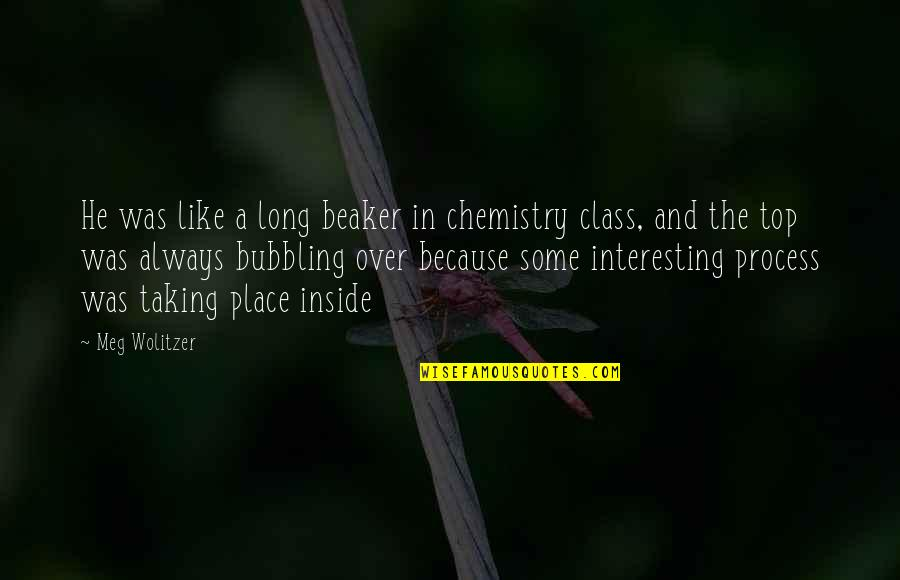 Top Of The Class Quotes By Meg Wolitzer: He was like a long beaker in chemistry