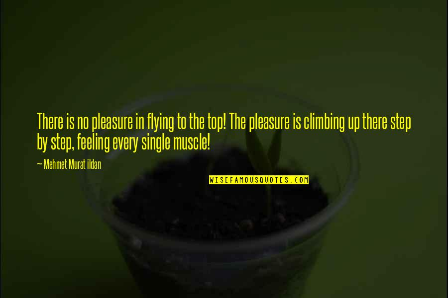 Top Thinkers Quotes By Mehmet Murat Ildan: There is no pleasure in flying to the