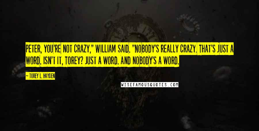 """Torey L. Hayden quotes: Peter, you're not crazy,"""" William said. """"Nobody's really crazy. That's just a word. Isn't it, Torey? Just a word. And nobody's a word."""