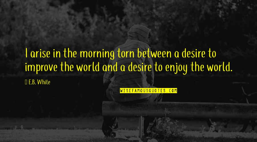 Torn In Between Quotes By E.B. White: I arise in the morning torn between a