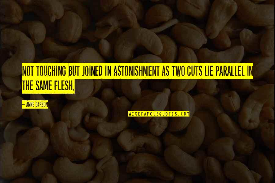 Touching Quotes By Anne Carson: Not touching but joined in astonishment as two