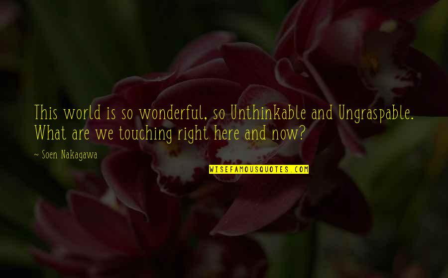 Touching Quotes By Soen Nakagawa: This world is so wonderful, so Unthinkable and