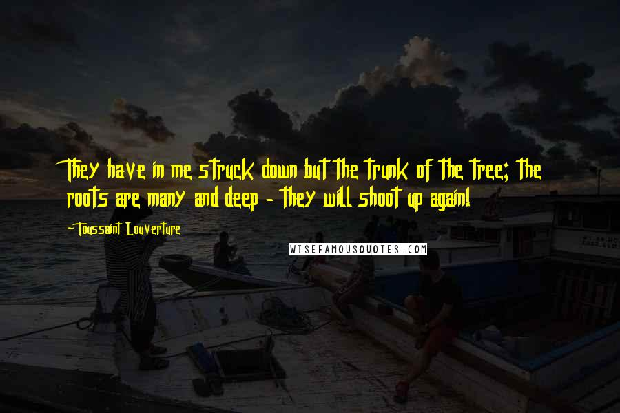 Toussaint Louverture quotes: They have in me struck down but the trunk of the tree; the roots are many and deep - they will shoot up again!