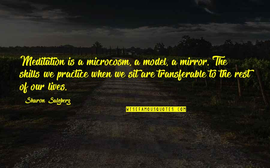 Town Planners Quotes By Sharon Salzberg: Meditation is a microcosm, a model, a mirror.