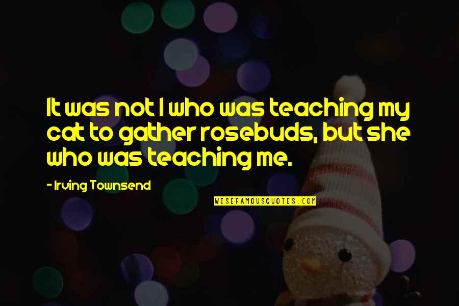 Townsend Quotes By Irving Townsend: It was not I who was teaching my