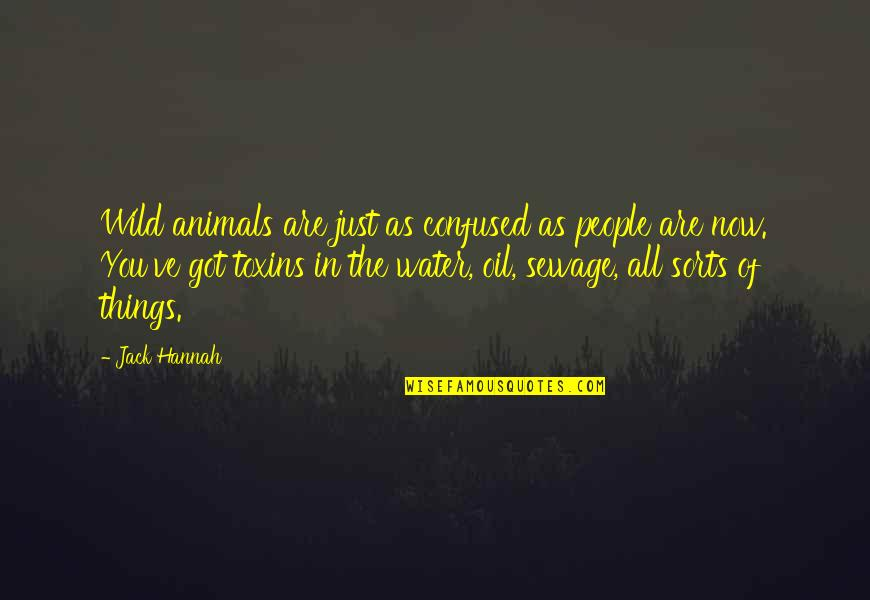 Toxins Quotes By Jack Hannah: Wild animals are just as confused as people