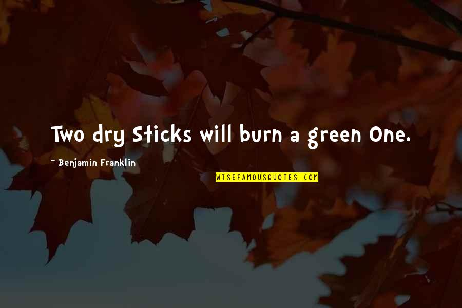 Tracy Jordan Siri Quotes By Benjamin Franklin: Two dry Sticks will burn a green One.