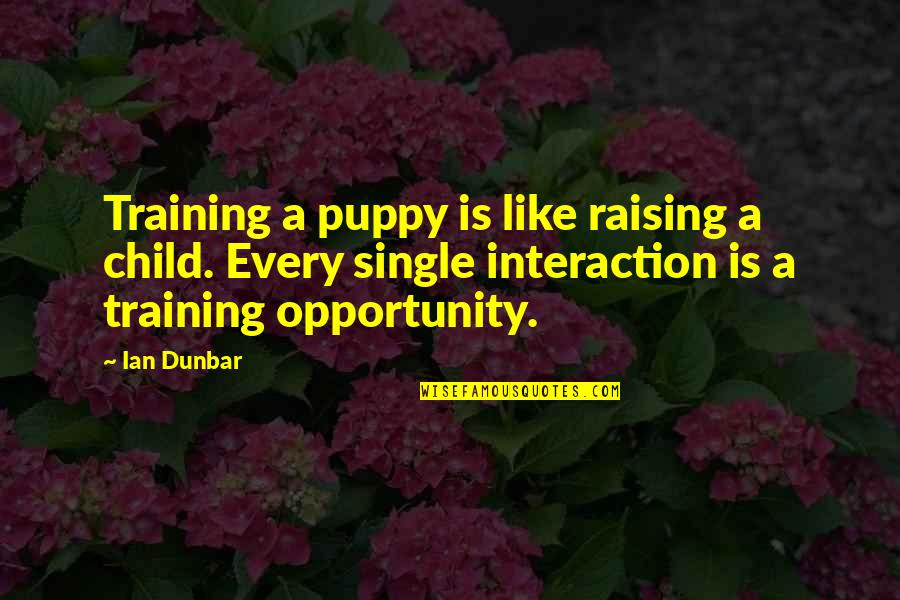 Training A Child Quotes By Ian Dunbar: Training a puppy is like raising a child.