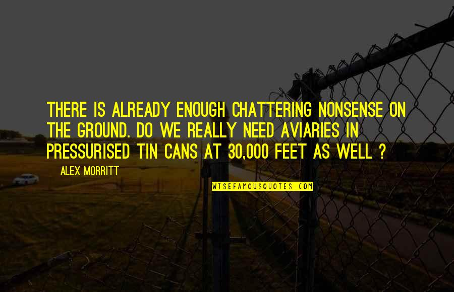 Travel Feet Quotes By Alex Morritt: There is already enough chattering nonsense on the