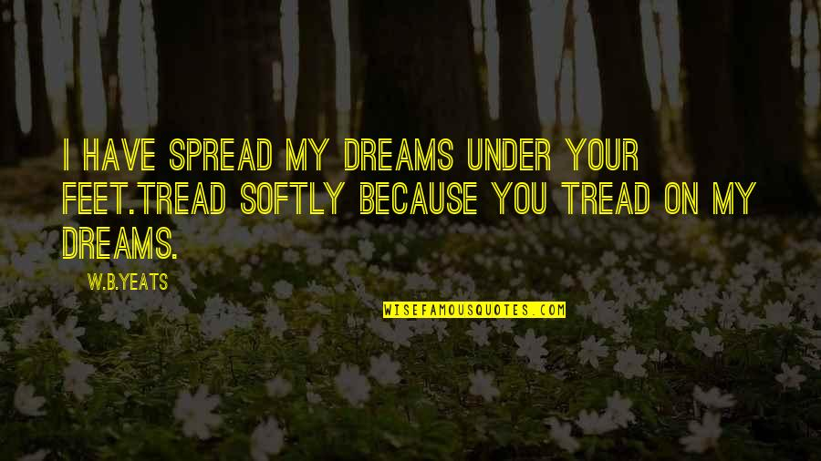 Tread Softly Quotes By W.B.Yeats: I have spread my dreams under your feet.Tread