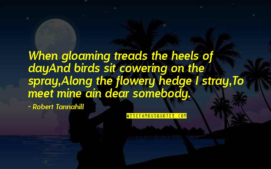 Treads Quotes By Robert Tannahill: When gloaming treads the heels of dayAnd birds